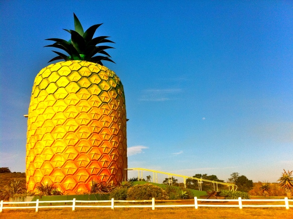 Why go to the Big Apple when you can go to the Big Pineapple?